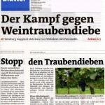 Medienbericht Feldschutzorgan Hainburg - Weintraubendiebstähle