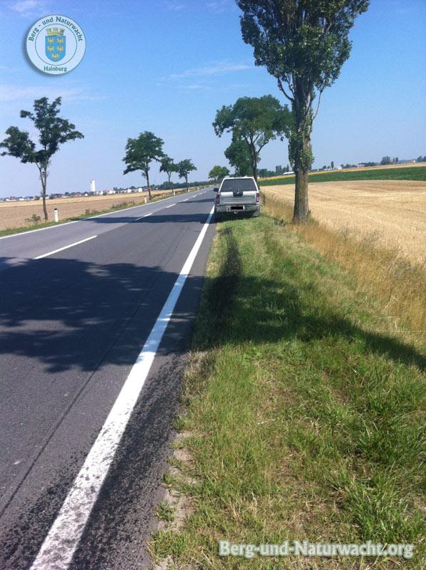 Die Spur des Motorölverlustes des Kraftfahrzeuges auf der B49 | Foto: Berg-und-Naturwacht.org