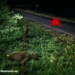 Verkehrsunfall mit Fahrerflucht | Foto: Berg-und-Naturwacht.org