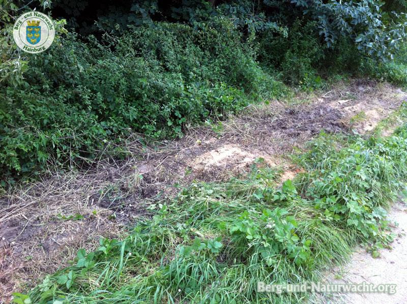 Der gefährliche Abfall wurde entfernt | Foto: Berg-und-Naturwacht.org