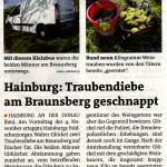 Bezirksblätter berichten im Jahresrückblick 2014 über erwischte Weintraubendiebe durch das Feldschutzorgan von Hainburg