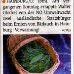 Bezirksblätter berichten über illegale Bärlauchernte in Hainburg