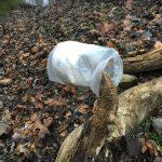 illegaler Lagerplatz im Natura 2000-Vogelschutzgebiet in Hainburg | Foto: NOE-Umweltwacht.org
