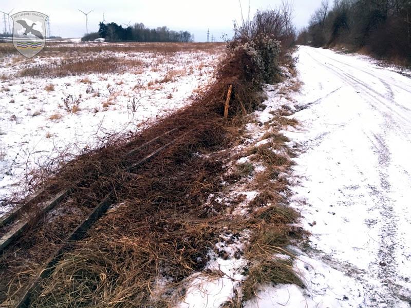 Einfriedung einer Koppel | Foto: NOE-Umweltwacht.org