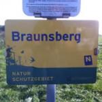 Europaschutzgebiet, Naturschutzgebiet Braunsberg in Hainburg   Foto: Berg-und-Naturwacht.org