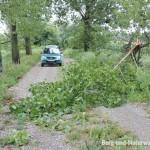 Unwetterschaden an Bäumen   Foto: Berg-und-Naturwacht.org