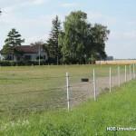 Feldgut: Weide und Zaun | Foto: NOE-Umweltwacht.org