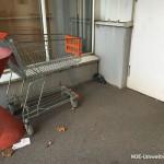 NÖ Umweltwacht Einsatz wegen verletzter Taube   Foto: NOE-Umweltwacht.org