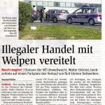 NÖN berichtet über unseren verhinderten grenzüberschreitenden Welpenhandel